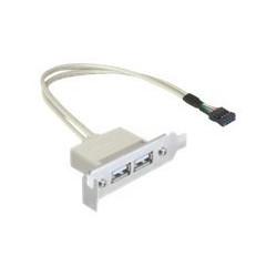 Delock Slot bracket - Kabel USB - USB (F) do hlavička USB 9 pinů (F) - USB 2.0 - 50 cm