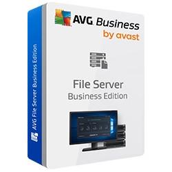 Renew AVG File Server Bus. 500-999L 2Y Not Prof.